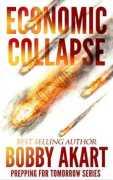ecomomic collapse